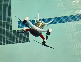 Loon Copter kan vliegen, drijven en duiken